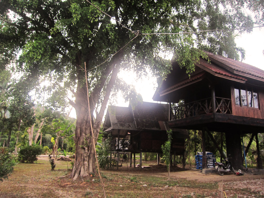 Khao Sok Housing