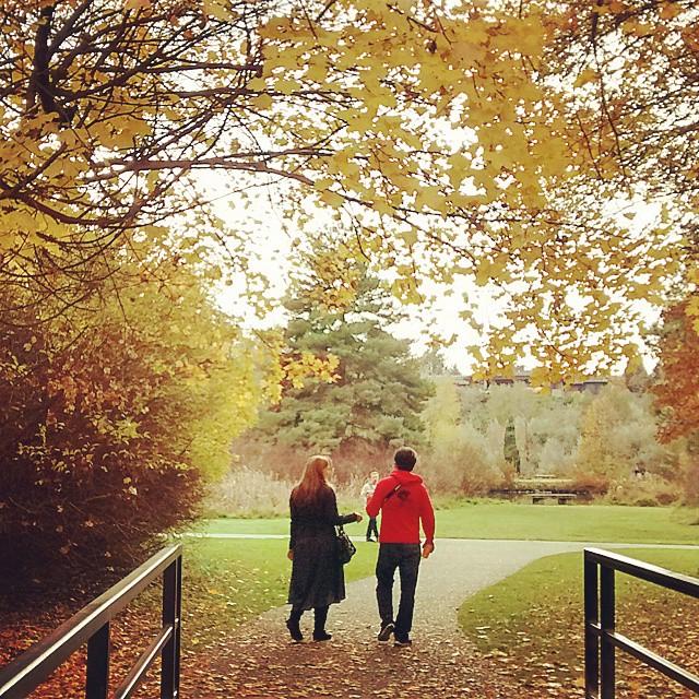 Boise_Fall