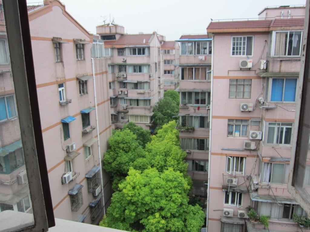 Shanghai Suburb
