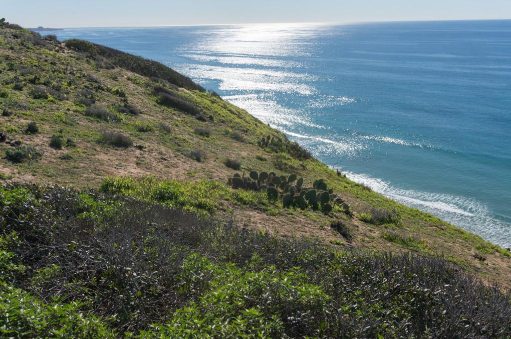 San Diego La Jolla Hike