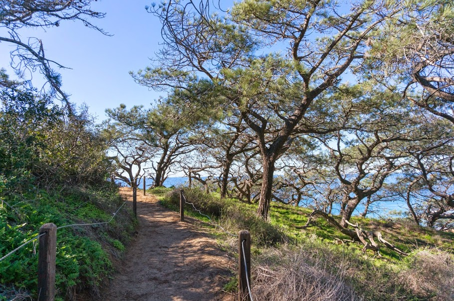La Jolla Hike