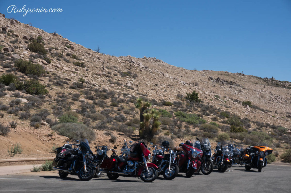 Socal Bikers at Joshua Tree