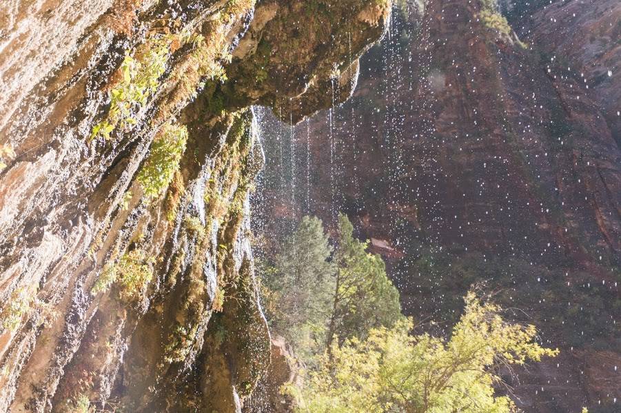 Weeping rock at Zion