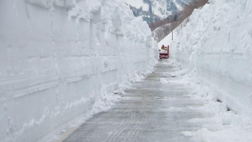 Niigata snow