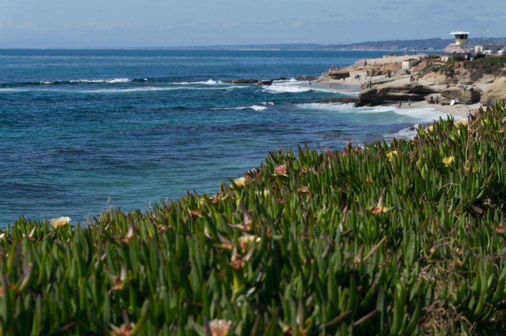 San Diego La Jolla View