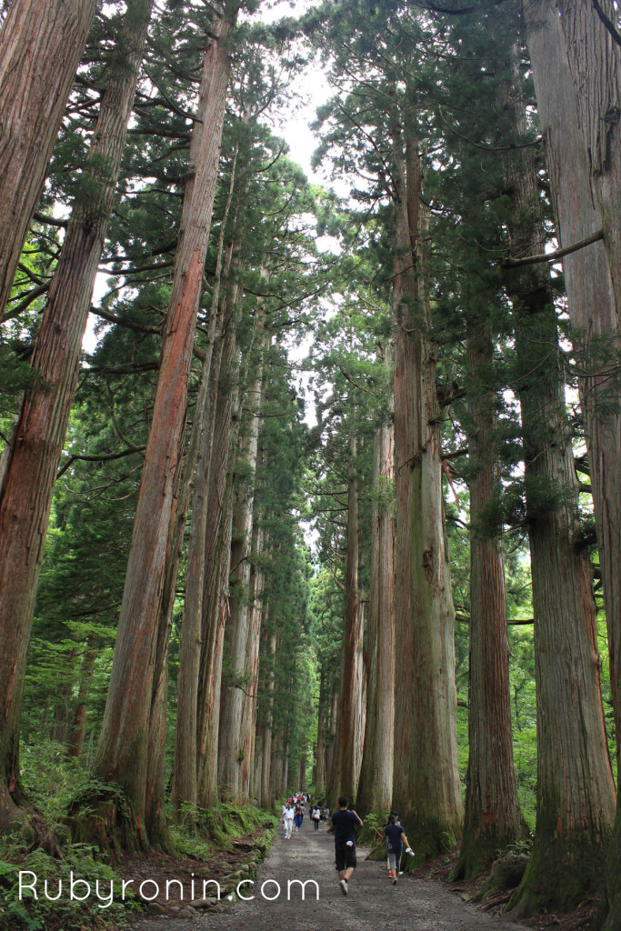 Nagano - Kamikochi4