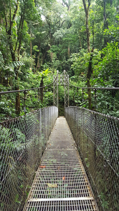 Costa Rica Mistico Suspension Bridge