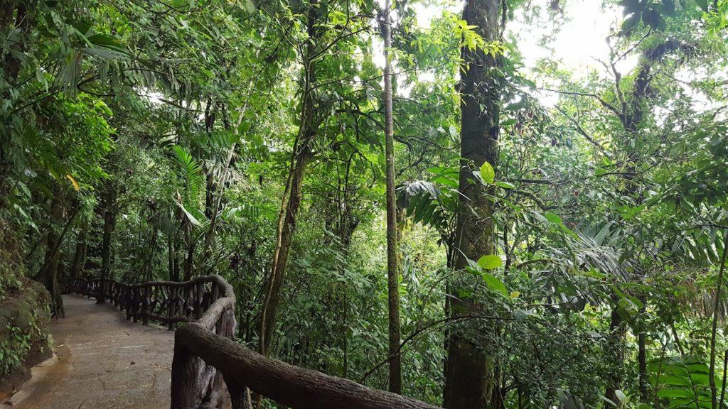 Costa Rica Arenal 2