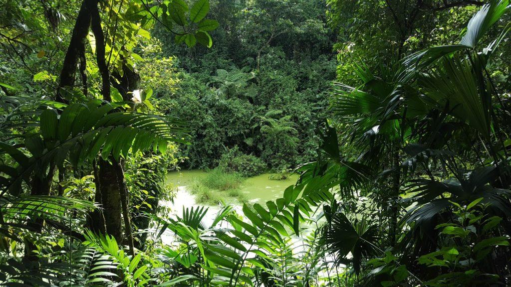 Costa Rica Arenal 7